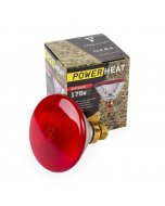 Warmtelamp PAR38 Powerheat 175 Watt