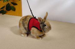 Pet Products Knaagdier Loopharnas Comfort M