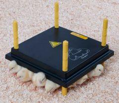 Comfort Warmteplaat voor Kuikens 30x30cm