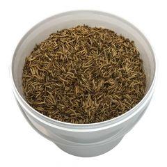 Tussendoortje: Meelwormen 10L