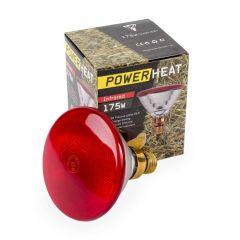 Warmtelamp PAR38 Powerheat 175 Watt