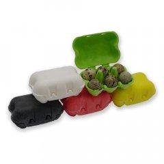 Kleurrijke eierdoos voor kwarteleieren - biobase