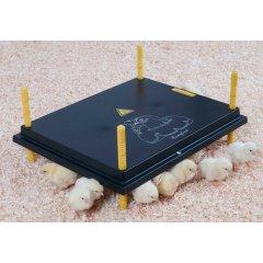 Comfort Warmteplaat voor Kuikens 50x40cm