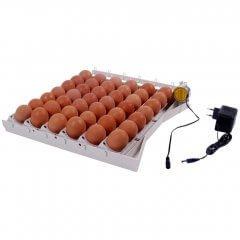 Keersysteem voor 42 kippeneieren